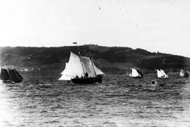 Sailboat Race at Baddeck