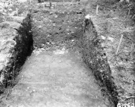 Trench, east half face